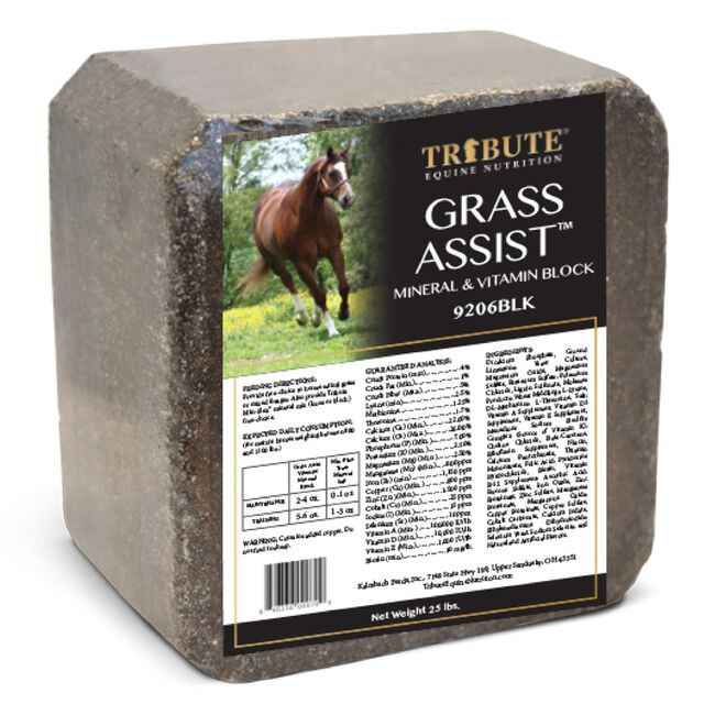 Tribute Grass Assist Block image number null