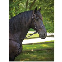 Perri's Draft American Made Leather Bridle
