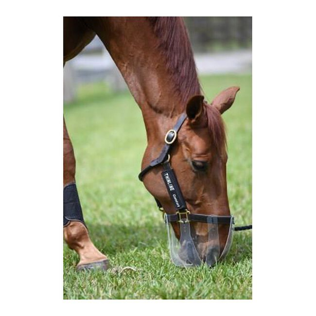 Thinline Flexible Filly Slow Feed Grazing Muzzle image number null