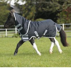 Horseware Amigo Hero 6 Petite Plus - Medium
