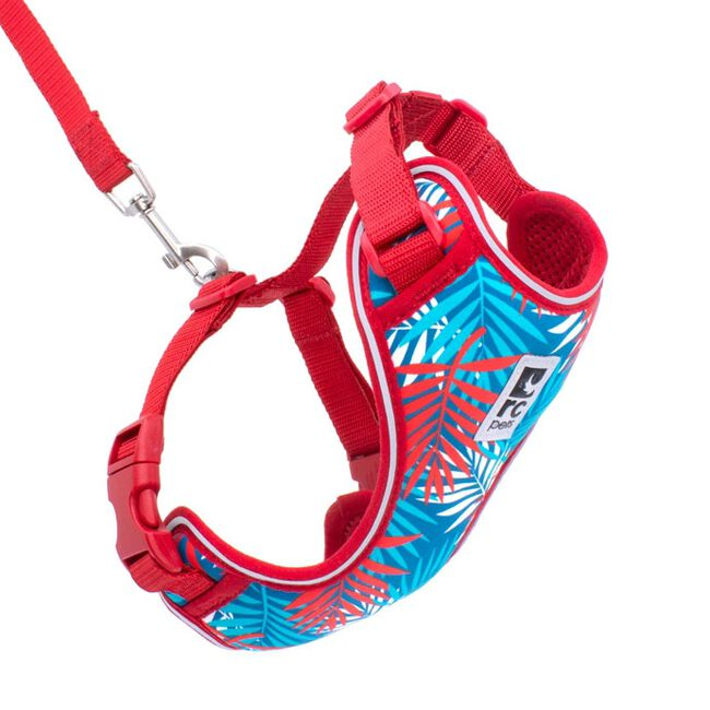 RC Pets Adventure Kitty Cat Harness - Maldives image number null