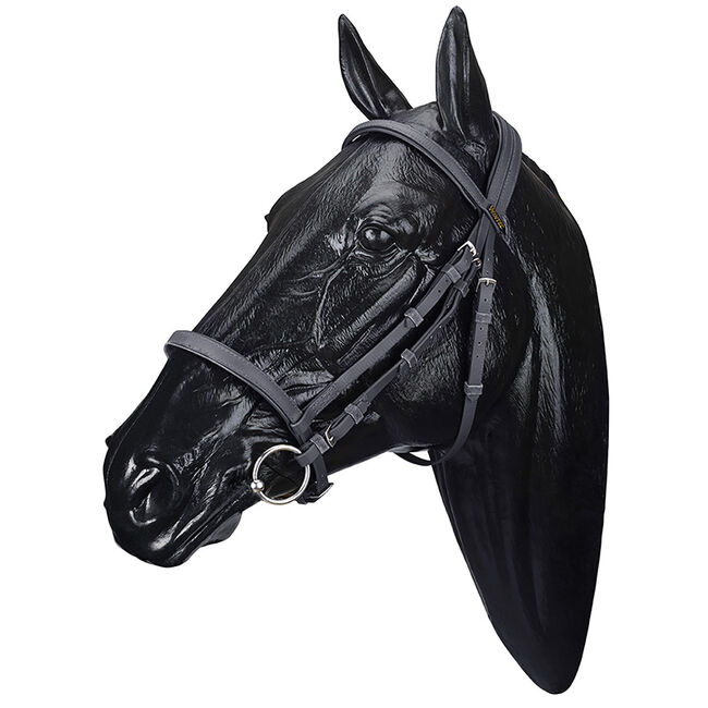 Wintec Synthetic Bridle image number null