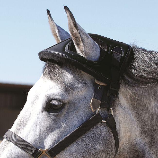 Cashel Horse Helmet image number null