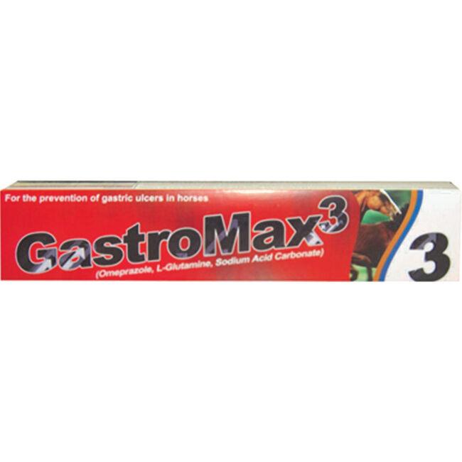 GastroMax3 - Paste Single Syringe  image number null
