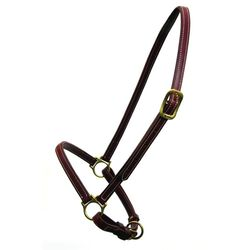 Walsh Leather Grooming Halter