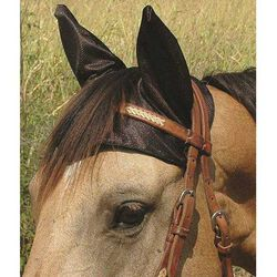 Cashel Comfort Ears, Draft