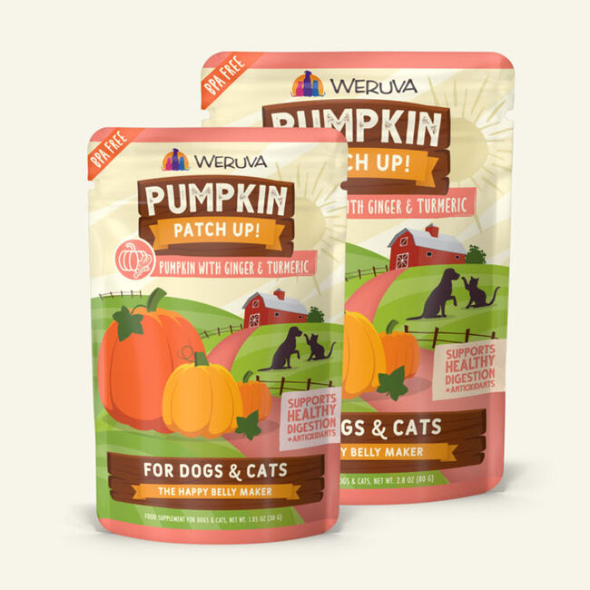 Weruva Pumpkin Patch Up Pumpkin w/ Ginger & Tumeric Supplement for Cats & Dogs image number null