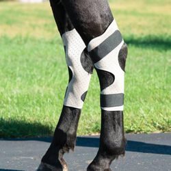 Weaver CoolAid Equine Icing and Cooling Hock Wraps