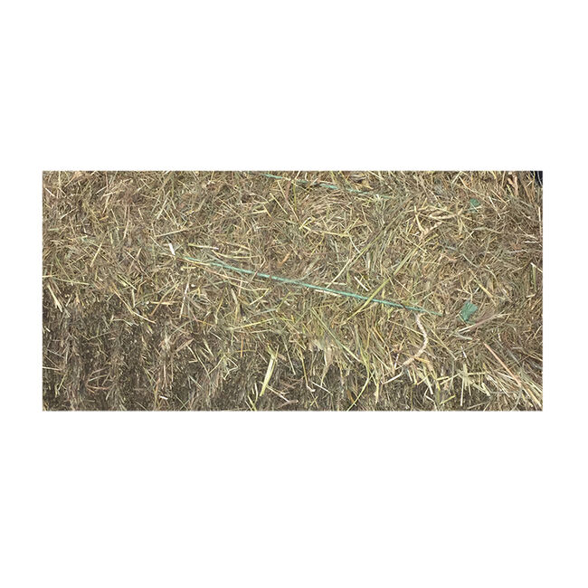 First Cut Hay image number null
