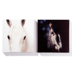 GiftCraft Horse Head 2pc Canvas Print Set