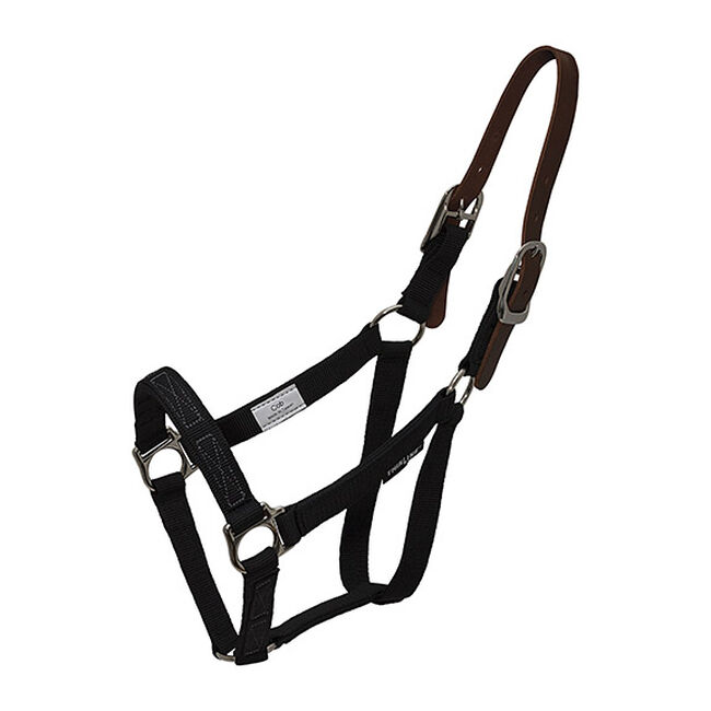 ThinLine Turnout Halter image number null