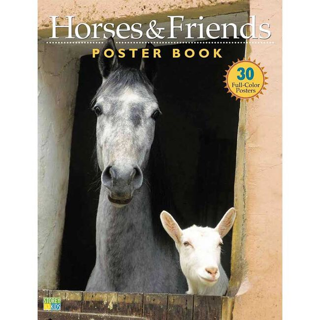 Horses & Friends Poster Book image number null