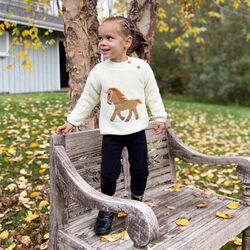 Equisite Elements of Style Pretty Pony Sweater