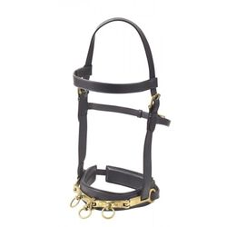 Camelot Leather Lunge Caveson