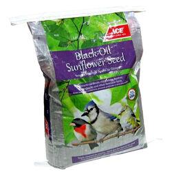 Ace Black Oil Sunflower Songbird Feed 40 lb