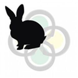 New Country Organic Rabbit Pellets