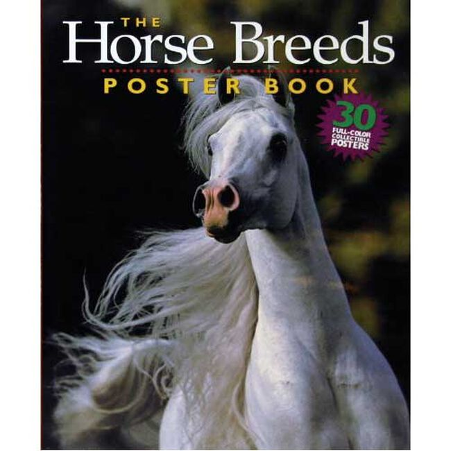 Horse Breeds Poster Book image number null