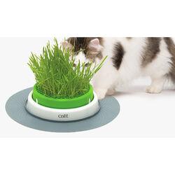 Hagen Catit Grass Planter