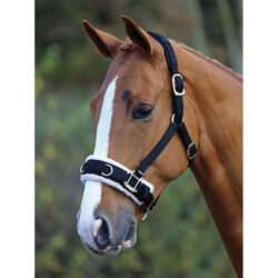 Shires Fleece Lined Lunge Cavesson With Padded Poll