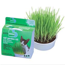 Van Ness Oat Garden Kit