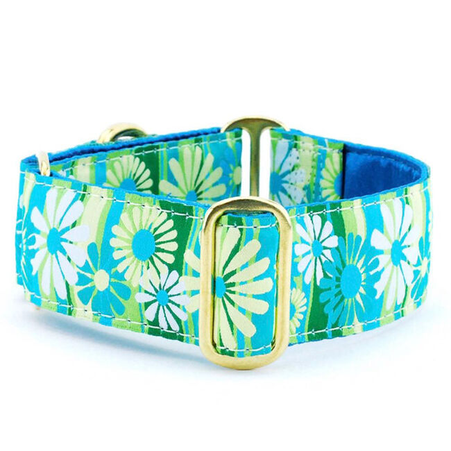 2 Hounds Design Martingale Dog Collar - Daisy Stripe image number null