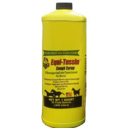 Select the Best Equi-Tussin Decongestant & Expectorant for Horses