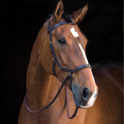 Rambo Micklem Bitless Multibridle with Rubber Reins