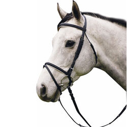 HDR Padded Dressage Bridle With Flash