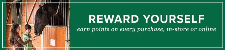 Reward Yourself and Your Pets